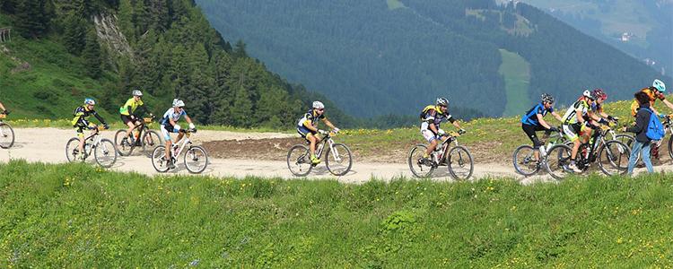 Vélo de route et de montagne